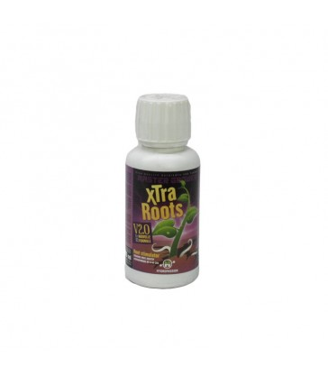 MASTER XTRA ROOTS 100ML