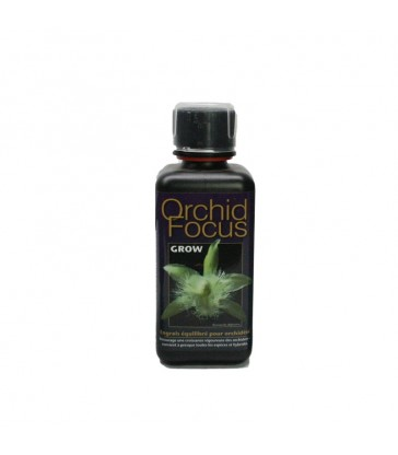 orchid focus grow 300