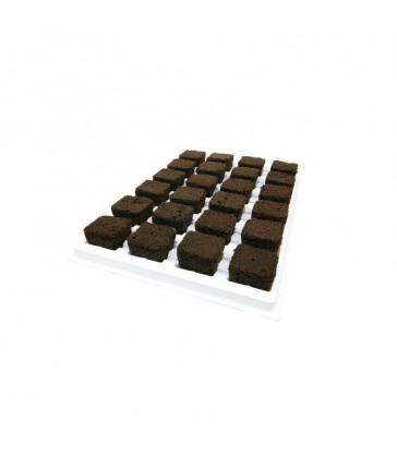 plaque de 24 cubes d'enracinement