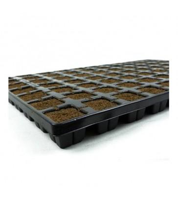 eazy plugs cubes d'enracinement plaque de 77