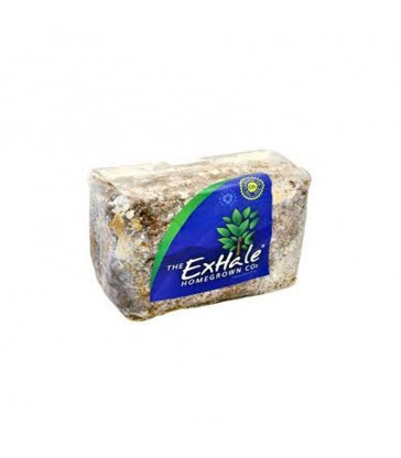 sac exhale co2