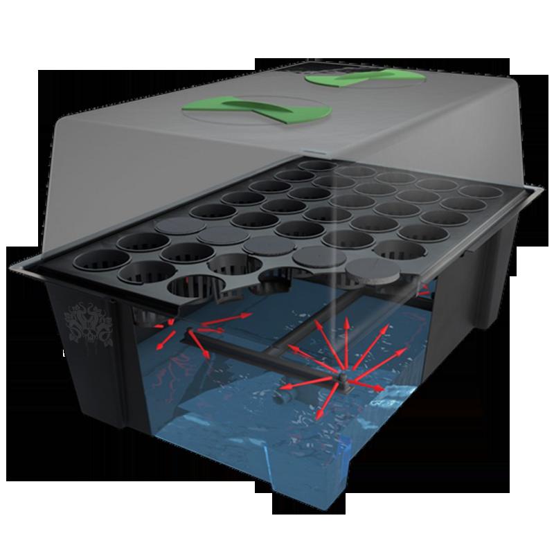 cloner x tream propagator pour bouturage