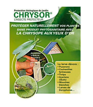 PACK POSTE TRAITEMENT ANTI ARAIGNEES ROUGES, PUCERONS, THRIPS