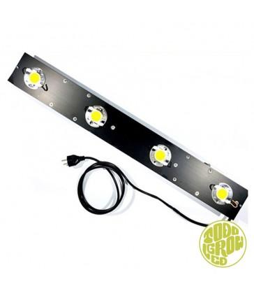 Barre LED TGL 220 CXB 3590