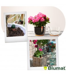 Blumat Classic XL Arroseur automatique
