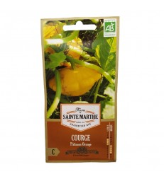 GRAINES BIO - COURGE PATISSON ORANGE