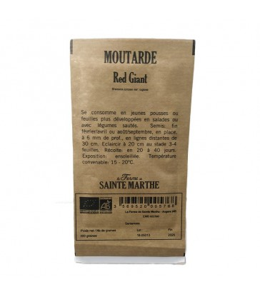 GRAINES BIO - MOUTARDE RED GIANT