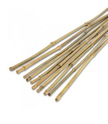 tuteur bambou 120cm